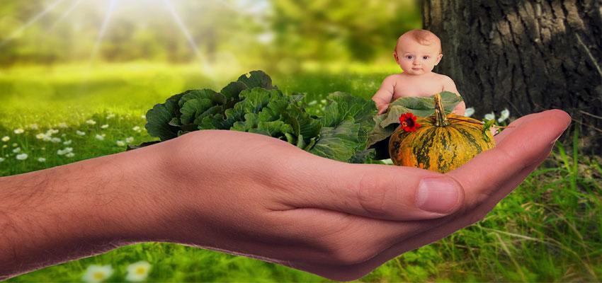 Schwanger werden durch richtige Ernährung
